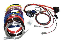 "Infinity Harness. Pre-wired power, grounds, power relay, fuse box, dual widebands & AEMnet. 100 x 96"" terminated wires for population. 12 small Pins."